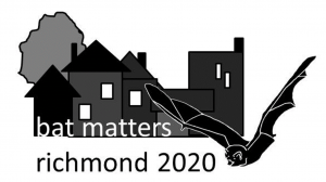 Bat Matters 2020 Virtual Conference @ Online